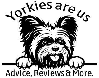 Yorkies Are Us
